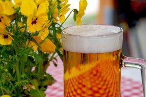 beer-3378136_1920